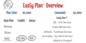 EaaSy Plan Overview GSI Management
